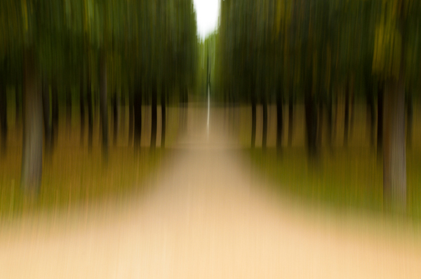 green_fotografie02_gr